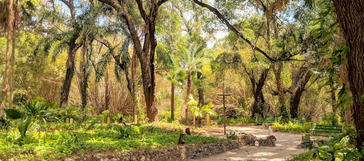 Walking Through The Garden of Life With Abba
